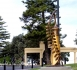 Large gold kowhai sculpture in Hawke's Bay