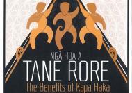 Book cover for 'Nga Hua A Tane Rore'